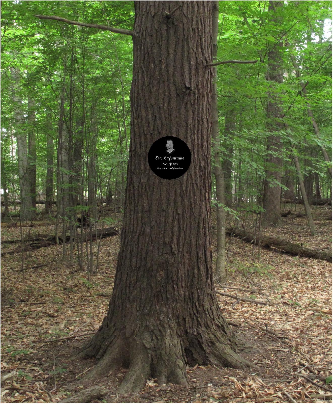 treesample