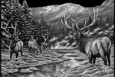 Deer Scene Ottawa Monuments